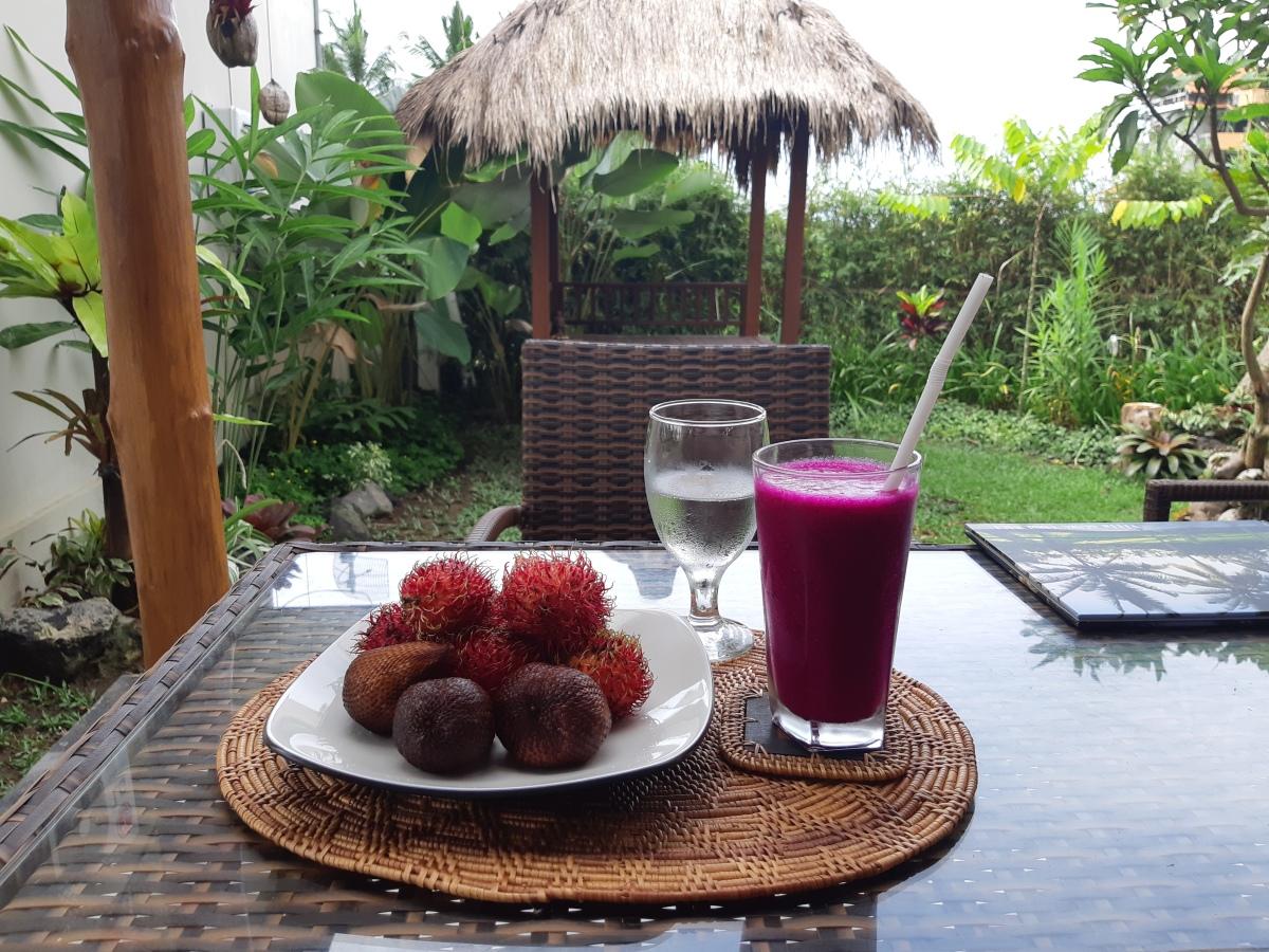 ペナンからバリ島へ ウブドのヴィラ・グスクに泊まる From Penang to Bali Villa Gusku